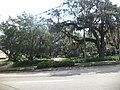 E Peck Greene Park N Duval St looking East.JPG