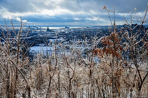 East Rock - View south from East Rock in winter.