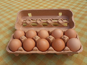 Nederlands: een doos met 10 eieren erin