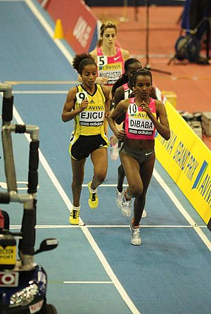 3000 metres - A women's indoor 3000 m race in Birmingham featuring Sentayehu Ejigu and Tirunesh Dibaba
