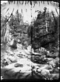 El barranc d'Aigües Pases amb un salt d'aigua en un bosc.jpeg
