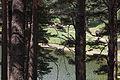 Encoro de Engolasters. Andorra 254.jpg
