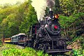Engine Three at Chestnut Hollow Bend - Durbin and Greenbrier Valley Railroad - West Virginia, USA - 16 May 2013.jpg