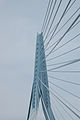 Erasmus bridge-DSC 0017.jpg