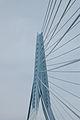 Erasmus bridge-DSC 0017.jpg