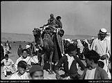 Esdud Fair (05) 1939 camel.jpg