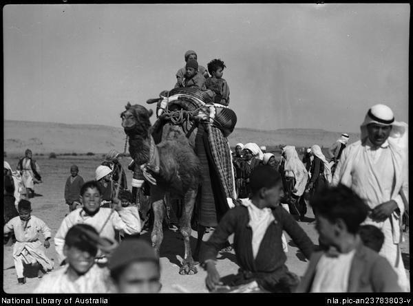 Esdud Fair (05) 1939 camel