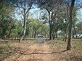 Estrada do Sítio Rancho Pedra Lisa - panoramio.jpg
