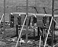 Execution Lincoln assassins (cropped).jpg