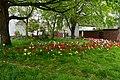 Exeter (2021-05-07) 02.jpg