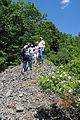 Exkursion der Naturschutzgruppe Taubergrund in die Steinriegellandschaft bei Creglingen.JPG