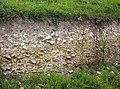 Exposed geology - geograph.org.uk - 484449.jpg