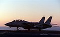 F-14, USS Carl Vinson, March 9, 1999.jpg