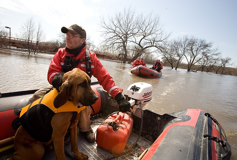"File:FEMA - 40689 - Valley Water Rescue member, Mike Knorr and search dog, ""Barnaby"" in North Dakota.jpg"