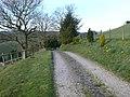 Farm road to Fron Farm. - geograph.org.uk - 390084.jpg