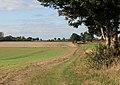 Farm track through fields - geograph.org.uk - 1536806.jpg