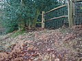 Farnham Old Park boundary bank - geograph.org.uk - 664551.jpg