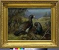 Ferdinand von Wright - Capercaillie Cocks - A-2002-616 - Finnish National Gallery.jpg