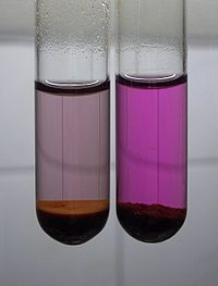 Ferrate and permanganate solution.jpg