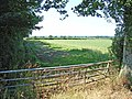 Field near Oughterby - geograph.org.uk - 206140.jpg