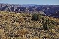 Fish River Canyon - Namibie - panoramio (6).jpg