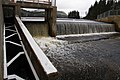 Fish ladder Ruban PJC2.jpg