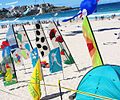 Flag allsorts - Festival of the Winds 2012.jpg