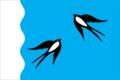 Flag of Senkinskoe (Perm krai).png