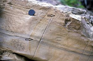 Flame structure - Flame structures in a sandy turbidite. Cozy Dell Formation, Topatopa Mountains, California.