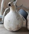 Flaskkurbits(gurkväxt) - Skoklosters slott - 95017.tif
