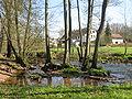 Flussaue Ostertal.JPG