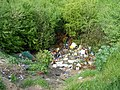 Fly tipping spot off Oak Lane Minster - geograph.org.uk - 1286649.jpg