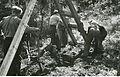 Flyktninger i arbeid (7141382687).jpg