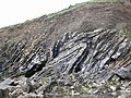 Folds in Cliff face - geograph.org.uk - 491096.jpg