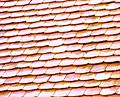 Folk Museum, Roof shingles 07 (2478351848).jpg