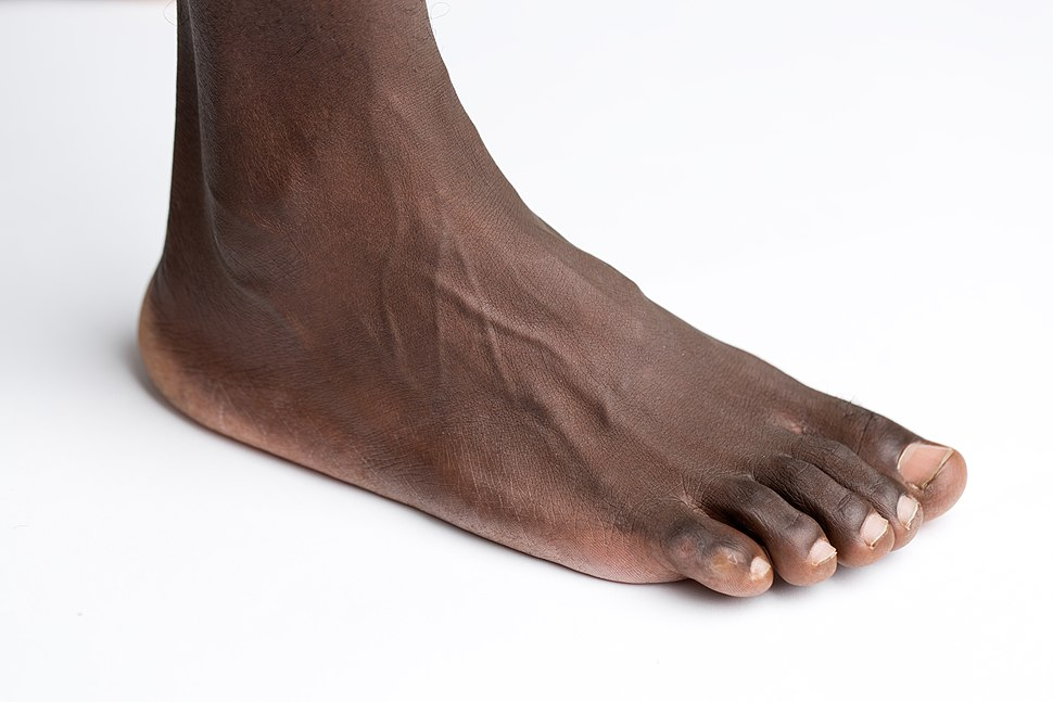 Foot on white background