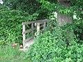 Footbridge in hedge - geograph.org.uk - 1339391.jpg