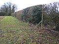 Footpath and Hedge Line - geograph.org.uk - 1130937.jpg
