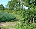 Footpath north from Upper Shuckburgh - geograph.org.uk - 1328867.jpg