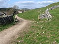 Footpath to Hartington - geograph.org.uk - 1230901.jpg