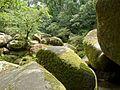 Forêt de Huelgoat 2015-1.jpg