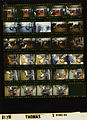 Ford B1798 NLGRF photo contact sheet (1976-10-09)(Gerald Ford Library).jpg