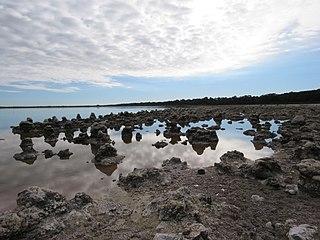 Lake Walyungup Lake in Perth, Western Australia