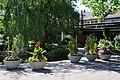 Freibad Letzigraben 2011-08-16 15-34-30.jpg