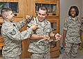 From left, U.S. Air Force Staff Sgt. Hugo Bernal drapes a ball python on Airman 1st Class Ponce Carrillo's shoulder as Carrillo holds a Great Plains rat snake and Airman 1st Class Aane Tucker watches during 110725-F-NS900-001.jpg