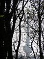 Fruška gora - TV toranj 08.jpg