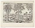 Fruitbomen en kruiden op Java, 1596, RP-P-OB-80.266.jpg
