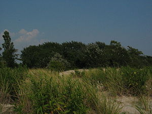Gateway National Recreation Area - Jamaica Bay Coastal Landscapes at Gateway