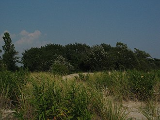 Gateway National Recreation Area - Jamaica Bay coastal landscapes