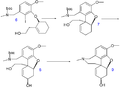 GalanthamineTotalSynthesis2007B.png